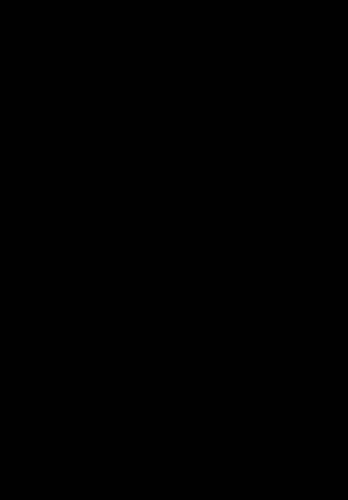 alize lcpc 1.5